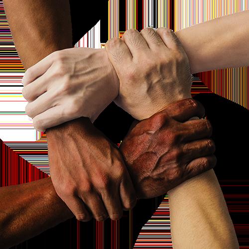 diversiteitsplannen